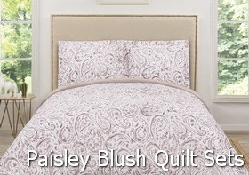 Truly Soft Watercolor Paisley Blush Quilt Sets