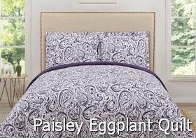 Truly Soft Watercolor Paisley Eggplant Quilt Sets