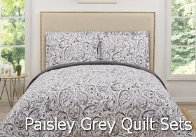 Truly Soft Watercolor Paisley Grey Quilt Sets